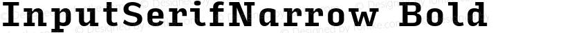 InputSerifNarrow Bold Preview Image
