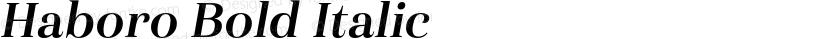 Haboro Bold Italic Preview Image