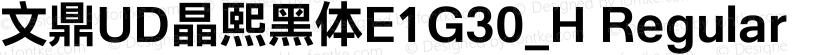 文鼎UD晶熙黑体E1G30_H Regular Preview Image