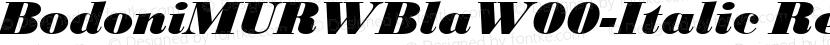 BodoniMURWBlaW00-Italic Regular Preview Image