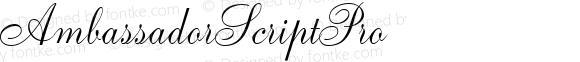 AmbassadorScriptPro ☞ 1.0 June 2007;com.myfonts.easy.canadatype.ambassador-script.ambassador-script-pro.wfkit2.version.2X43