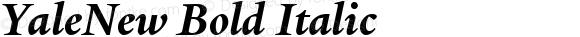 YaleNew Bold Italic