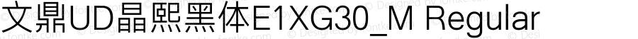 文鼎UD晶熙黑体E1XG30_M Regular Version 1.00