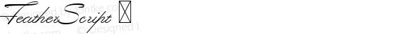 FeatherScript ☞ Version 1.000;com.myfonts.easy.lettering-inc.feather-script.feather-script.wfkit2.version.3TGx