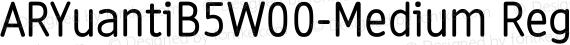 ARYuantiB5W00-Medium Regular preview image