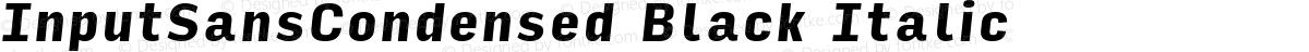 InputSansCondensed Black Italic