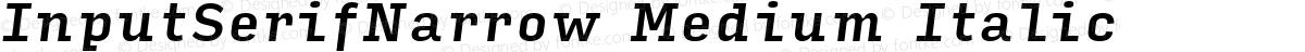 InputSerifNarrow Medium Italic