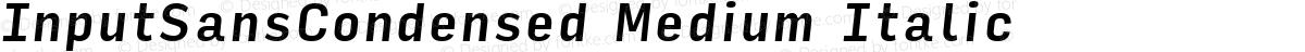 InputSansCondensed Medium Italic