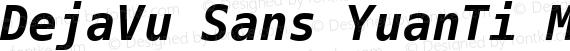 DejaVu Sans YuanTi Mono Bold Italic preview image