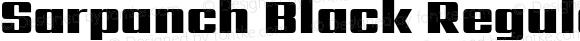 Sarpanch Black Regular