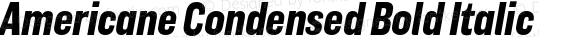 Americane Condensed Bold Italic Version 1.000;