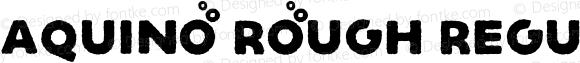 Aquino Rough Regular Version 1.000;PS 001.000;hotconv 1.0.88;makeotf.lib2.5.64775