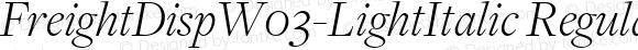 FreightDisp W03 Light Italic