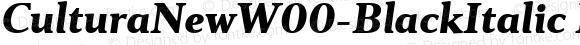 Cultura New W00 Black Italic