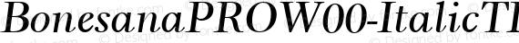 BonesanaPROW00-ItalicTLF Regular preview image