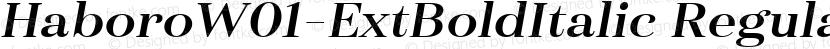 HaboroW01-ExtBoldItalic Regular Preview Image