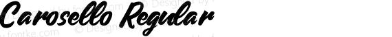Carosello Regular preview image