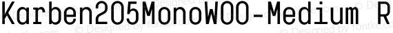 Karben205MonoW00-Medium Regular preview image