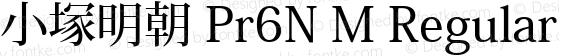 小塚明朝 Pr6N M Regular Version 1.00