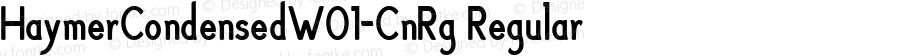 HaymerCondensedW01-CnRg Regular Version 1.00