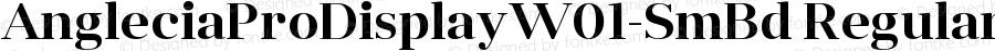 AngleciaProDisplayW01-SmBd Regular Version 1.00