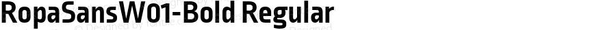RopaSansW01-Bold Regular Version 1.10