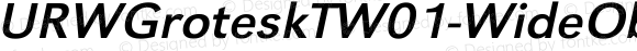URWGroteskTW01-WideOblique Regular Version 1.00
