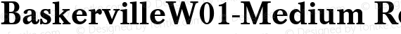 BaskervilleW01-Medium Regular preview image