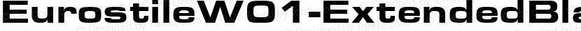 EurostileW01-ExtendedBlack Regular Preview Image