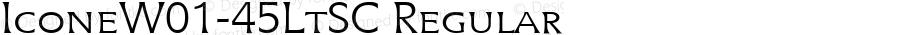 IconeW01-45LtSC Regular Version 1.00