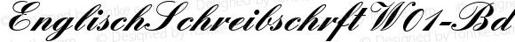 EnglischSchreibschrftW01-Bd Regular Version 1.00