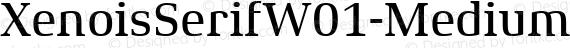 XenoisSerifW01-Medium Regular preview image