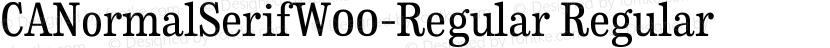 CANormalSerifW00-Regular Regular Preview Image