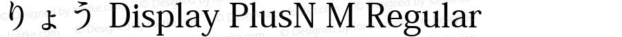 りょう Display PlusN M Regular Version 1.00