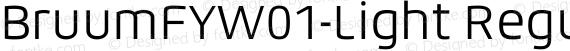 BruumFYW01-Light Regular preview image