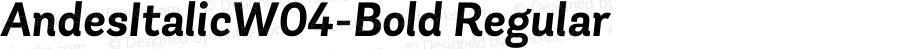AndesItalicW04-Bold Regular Version 1.00