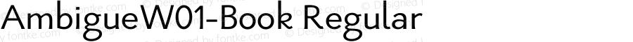 AmbigueW01-Book Regular Version 1.2