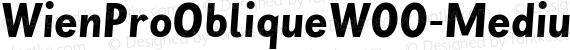 WienProObliqueW00-Medium Regular preview image
