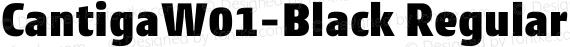 CantigaW01-Black Regular preview image