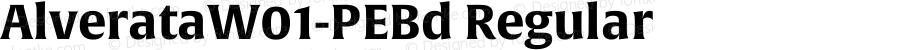 AlverataW01-PEBd Regular Version 1.00