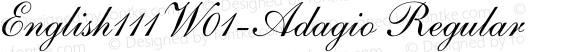English111W01-Adagio Regular preview image