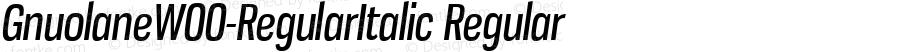 GnuolaneW00-RegularItalic Regular Version 2.20