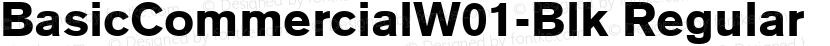 BasicCommercialW01-Blk Regular Preview Image