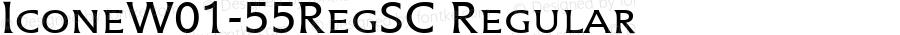 IconeW01-55RegSC Regular Version 1.00