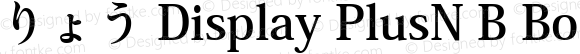 りょう Display PlusN B Bold Version 1.00