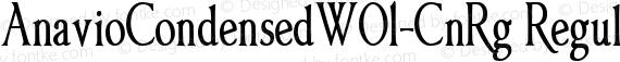 AnavioCondensedW01-CnRg Regular preview image
