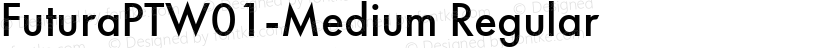 FuturaPTW01-Medium Regular Preview Image