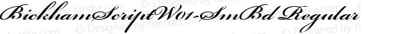 BickhamScriptW01-SmBd Regular preview image