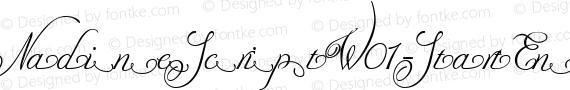 NadineScriptW01-StartEnd Regular preview image