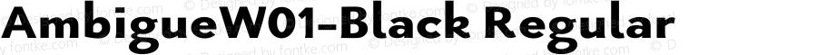 AmbigueW01-Black Regular Version 1.02